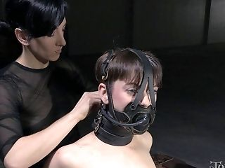 BDSM, Bondage, Cute, Femdom, Fetish, Lingerie, Skinny, Stockings, Tanned, Torture,