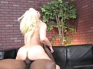 Black man goes ham in her ass